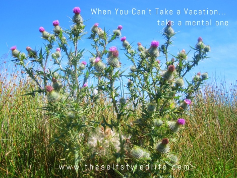 When You Can't Take a Vacation... take a mental one | www.theselfstyledlife.com